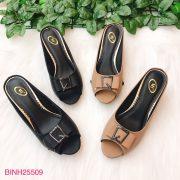 BINH25509