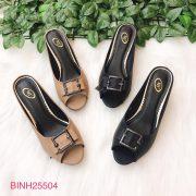 Binh25504