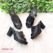 HANA1-18