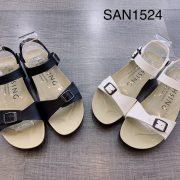 San1524