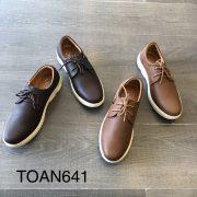 TOAN641